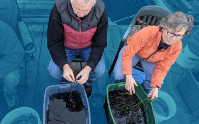 Tending Our Marine Garden