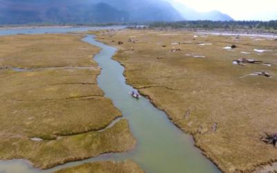 Squamish Estuary Clean Up