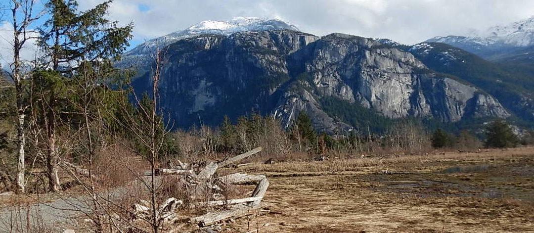 Squamish Nation Stewardship Network – workshop