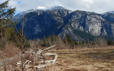 Squamish Nation Stewardship Network – workshop